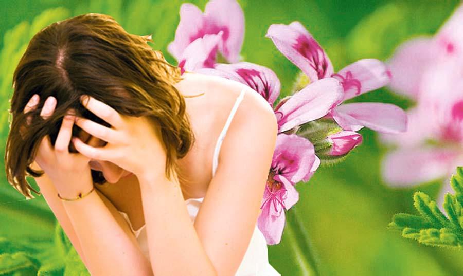 7 beneficios del geranio para nuestra salud