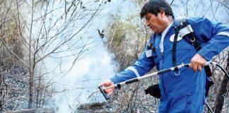 Evo Morales, participó de las intensas labores que buscan apagar los incendios