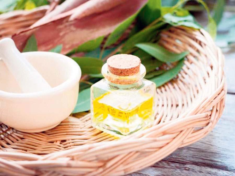 Remedios con eucalipto