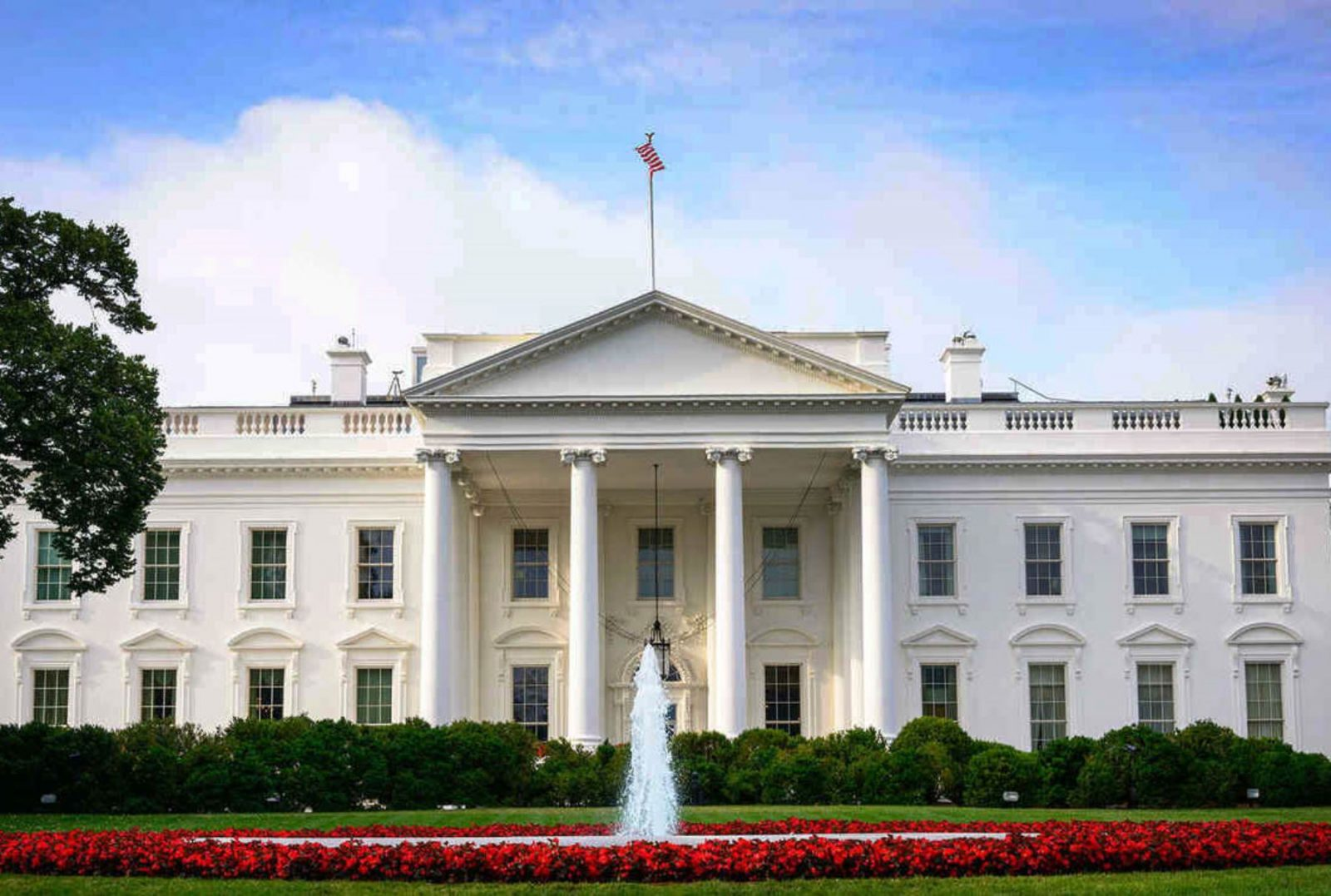 Casa Blanca: Personas que puso Trump, serán removidas